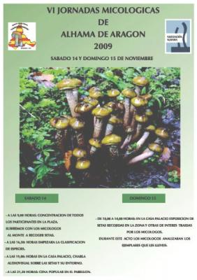 20091107205412-cartel-setas-2-1-.jpg