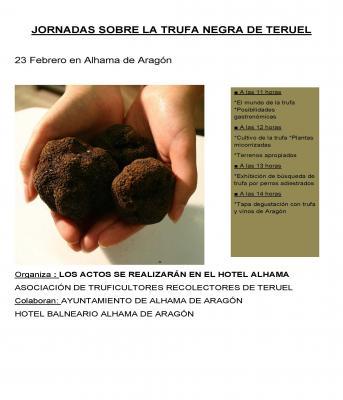 20130220230149-jornadas-sobre-la-trufa-negra-de-teruel.jpg